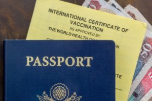 Zika Virus Reinforces Need for Travel Immunization
